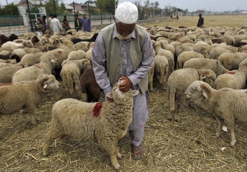 Bakra Eid,Bakra Eid 2015,Bakra Eid festival,Happy Bakra Eid,Muslims celebrates Bakra Eid,Eid al-Adha,Eid al-Adha 2015