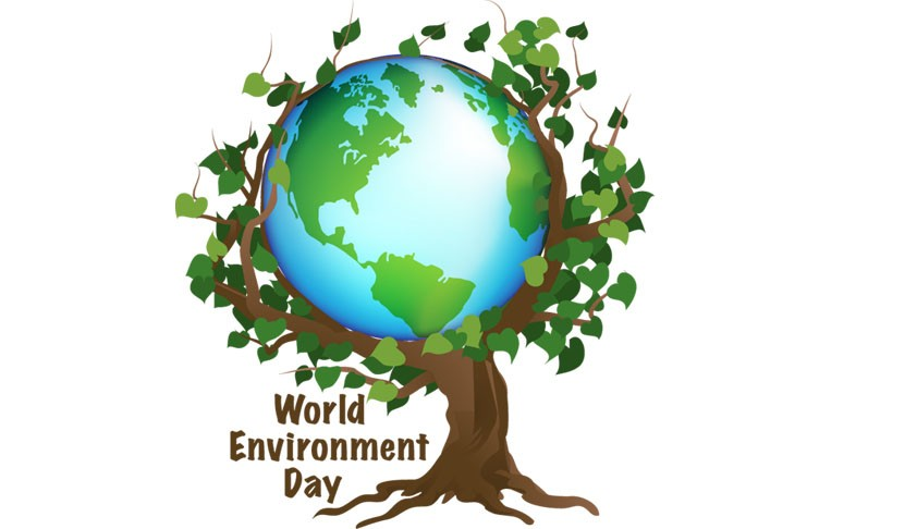World Environment Day,World Environment Day 2016,World Environment Day quotes,World Environment Day wishes,World Environment Day messages,World Environment Day greetings,Environment Day quotes,World Environment Day slogans,Environment Day quotes photos,En