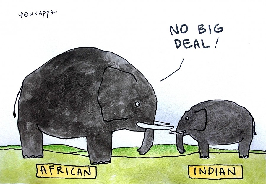 IBTimes Cartoon,Ponnappa cartoon,Africa cartoon,India cartoon,Africa India