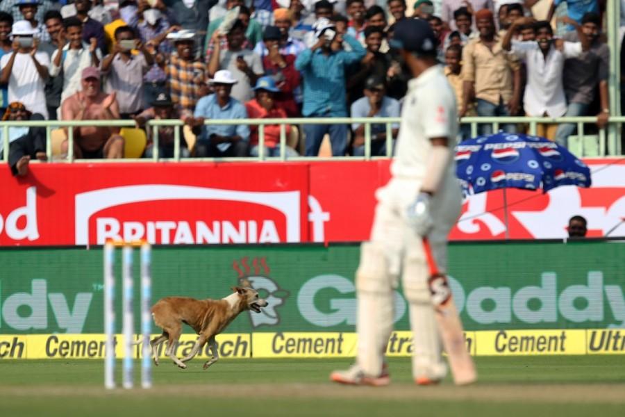 India vs England,Virat Kohli,Cheteshwar Pujara,Virat Kohli and Cheteshwar Pujara,India vs England Vizag Test,Ind vs Eng,India vs England test match,India vs England pics,India vs England images,India vs England photos,India vs England stills,India vs Engl
