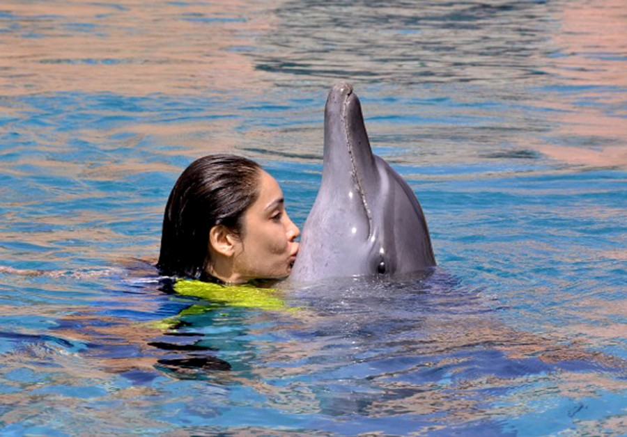 Sofia Hayat,Dubai,dolphin,holiday,photos