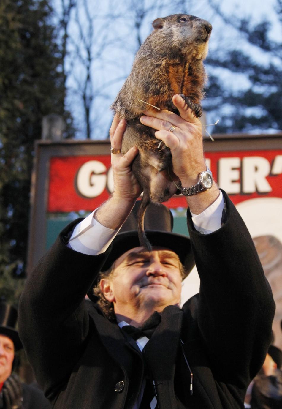 Groundhog Day 2014: Punxsutawney Phil Sees His Shadow