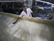 a-worker-spreads-sugar-inside-a-sugar-factory-at-sanyan-village-in-gujarat-april-23-2012
