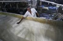 a-worker-spreads-sugar-inside-a-sugar-factory-at-sanyan-village-in-gujarat-april-23-2012