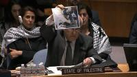 un-security-council-meets-to-debate-over-gaza-crisis