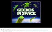 Go Get Those Geckos