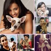 Trisha Krishnan with dogs on Dog Day