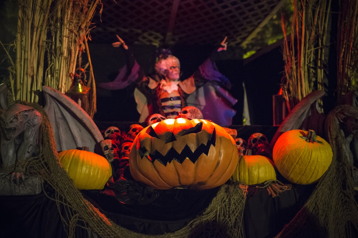 Halloween 2016: When is All Saints' Eve? Meaning, origin and ...