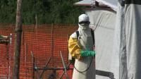 training-helps-farmers-in-sierra-leones-ebola-hit-areas
