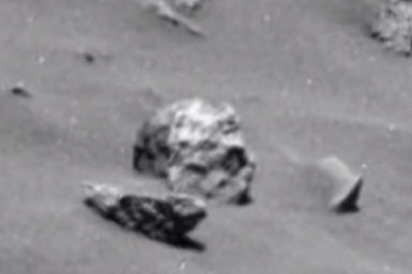 human skull found in mars' hoax: is it alien bones, ufo, or just, Skeleton