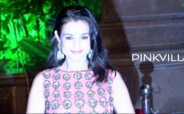ameesha-patel-at-arpita-khan-and-aayush-sharmas-wedding-reception