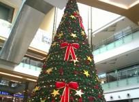 Bangalore Christmas