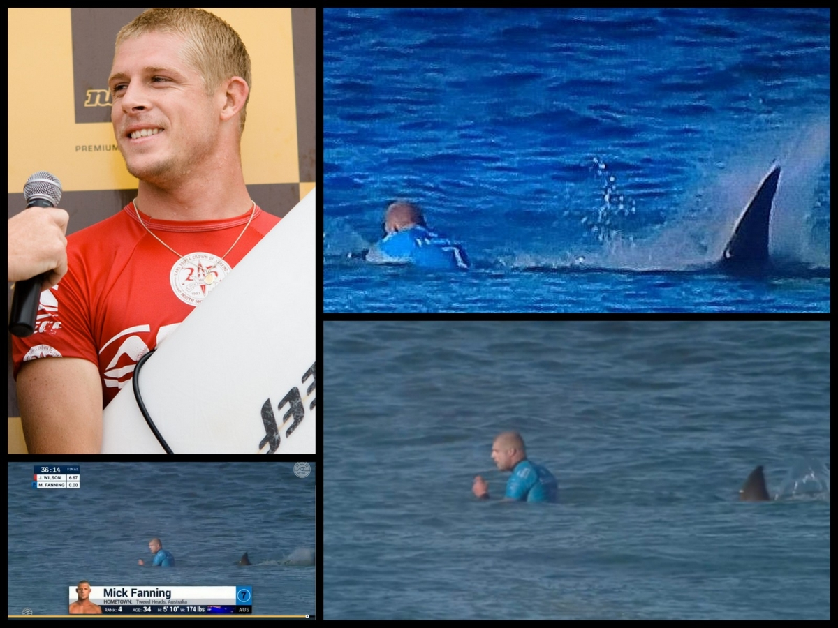 ... Mick Fanning shark attack Empfehlungscode bwin bwin 2013 sparks anger from surfing champion's mother