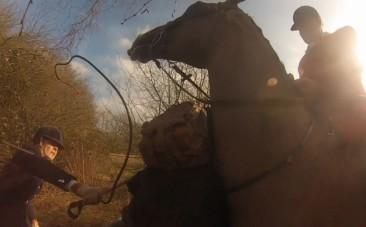 Hunt master whips campaigner with riding crop