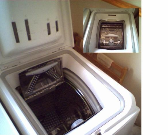 washing machine, twins in washing machine, rohini delhi twins
