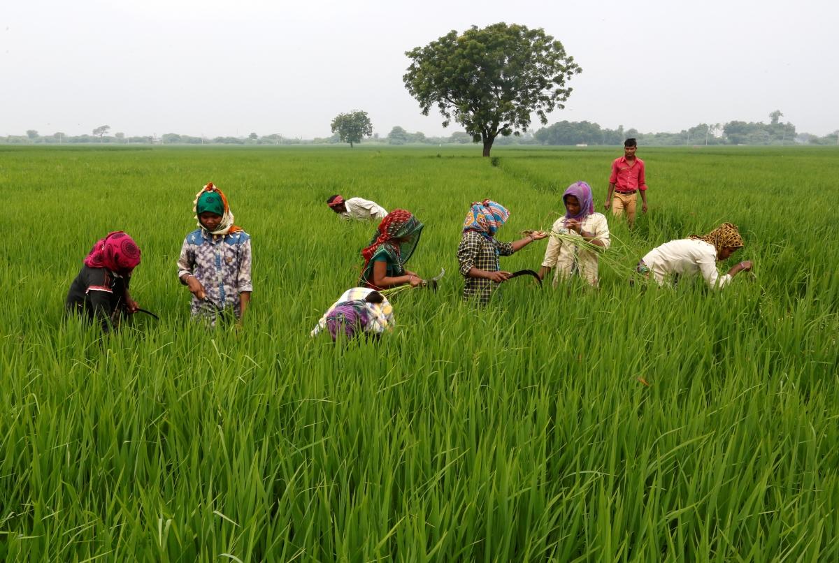 Farm loan waiver: Karnataka wants Centre to write off Rs ...