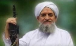 Ayman al-Zawahiri, Al Qaeda