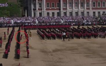 Guardsman collapses during Queens birthday celebrations