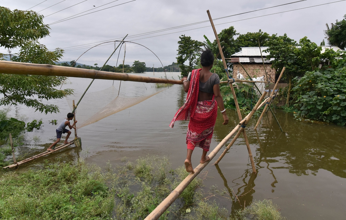 assam floods Assam floods severity of assam floods heightens old fears about dams in the brahmaputra basin north eastern electric power corporation claims its dam on the ranganadi.