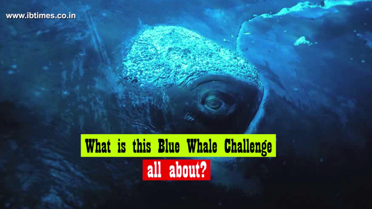 Blue Whale Challenge: Myths and Misconceptions debunked