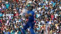 Sri lanka cricket fans, India vs Sri Lanka, India cricket fans