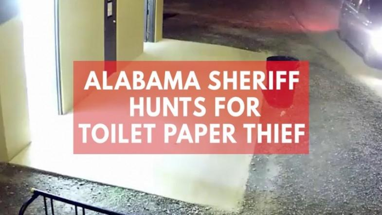 Alabama sheriff hunts for thief who stole toilet paper