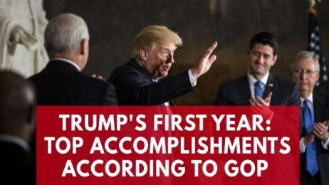 Donald Trumps top accomplishments in his first year as president