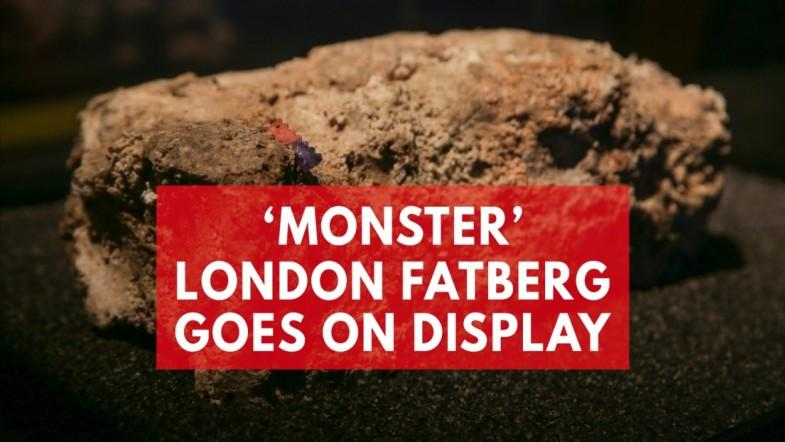 Monster fatberg goes on display in London