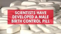 Scientists Have Developed A Male Birth Control Pill