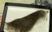 lock-of-john-lennons-hair-set-for-auction