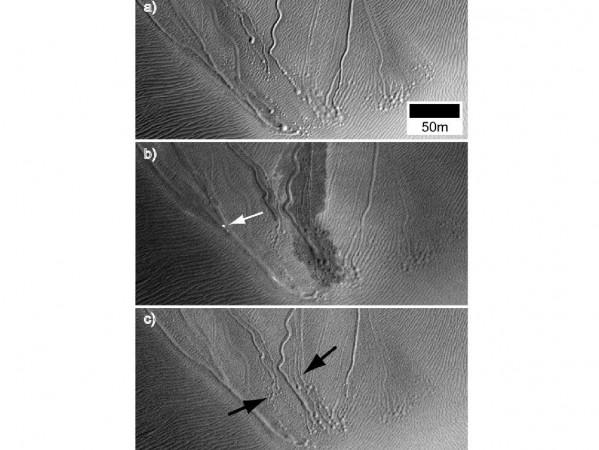 Linear Gullies Inside Russell Crater, Mars