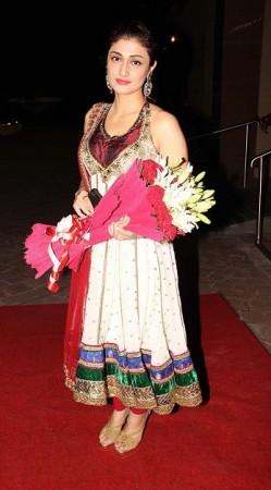 Ragini Khanna at the wedding (Varinder Chawla)