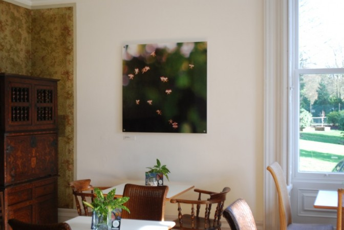 Installation shot of the pictures in The Whitaker Gallery, Rossendale (Photo: John Hyatt)