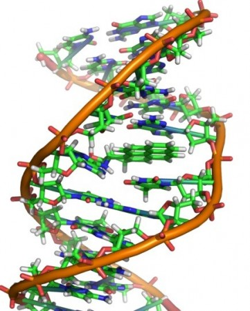 An 'Alien' DNA has been discovered in a massive scientific breakthrough that could possibly prove that life in outer space exists. (Representational Picture: Wikimedia Commons)
