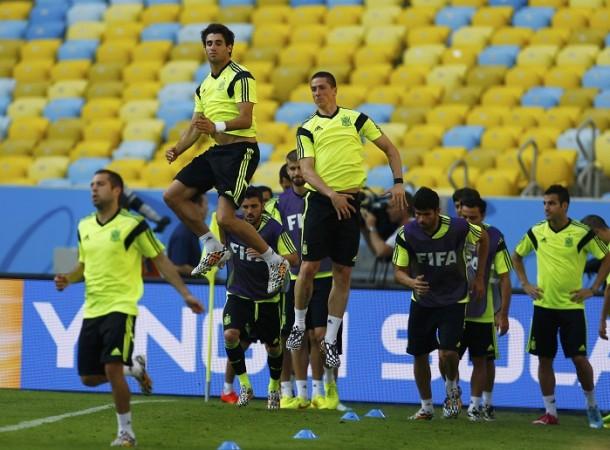 Spain Javi Martinez Fernando Torres Spain