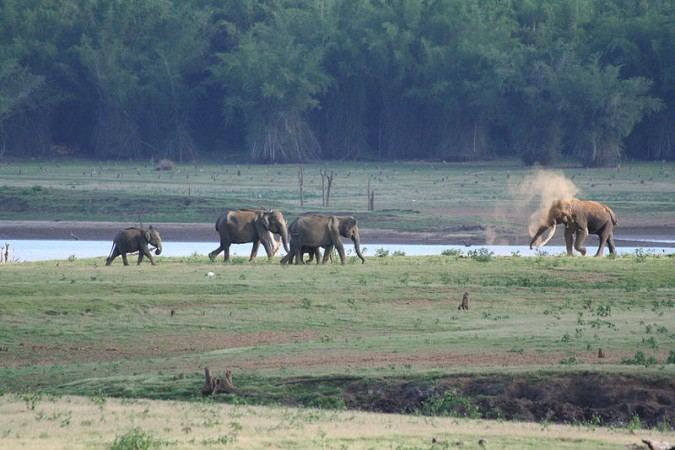 Kabini Forest Reserve