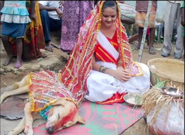 Unusual Indian Wedding
