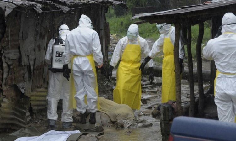 Health workers prepare to carry an abandoned dead body with Ebola symptoms at Duwala market in Monrovia, Liberia.