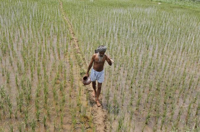 Drought monsoon