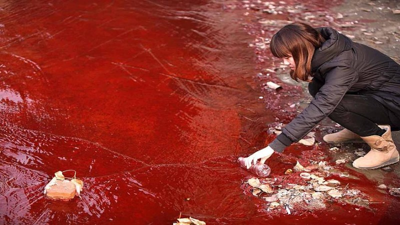 Blood rain is dust in rain from the Sahara.[Representation Pic.]