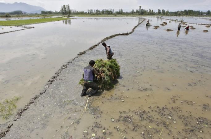 farmers india