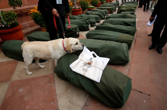 A sniffer dog checks bags containing budget papers in New Delhi