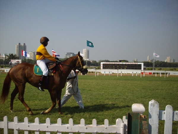horse racing, mahalaxmi race course