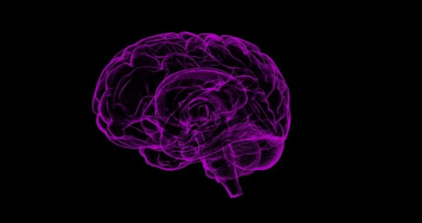 World brain tumor day, Brain tumour, brain health, mental health, health,