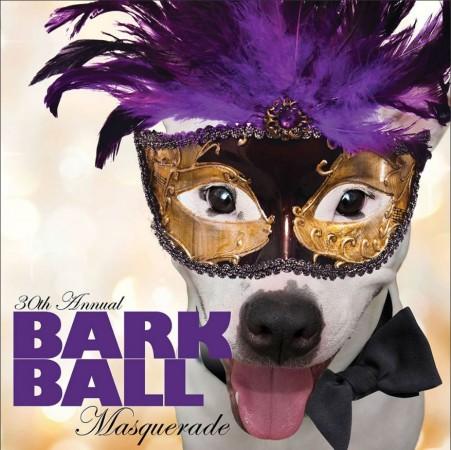 Bark Ball