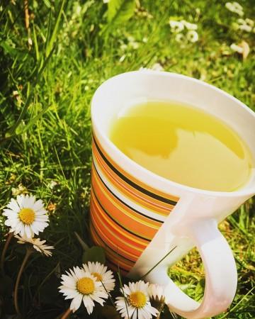 Green tea, weight loss, diet, health,