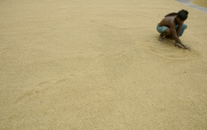 A labourer works at a rice mill in Ranibazar