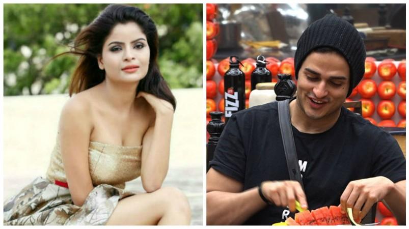 Gehana Vasisth and Priyank Sharma