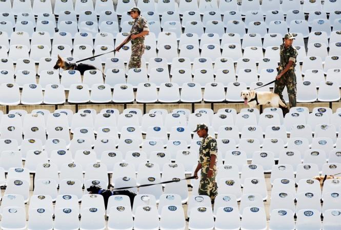 PCA Stadium dogs