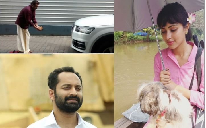 PY car registration row, Amala Paul, Suresh Gopi, Fahadh Faasil